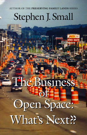 Book Cover for The Business Of Open Space: What's Next by Stephen Small